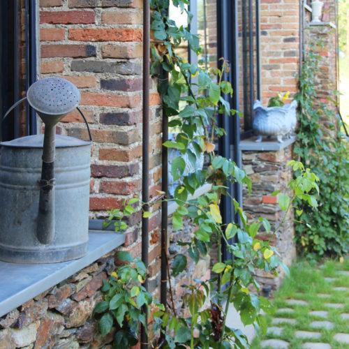 grange zinc pierre métal plantes grimpantes